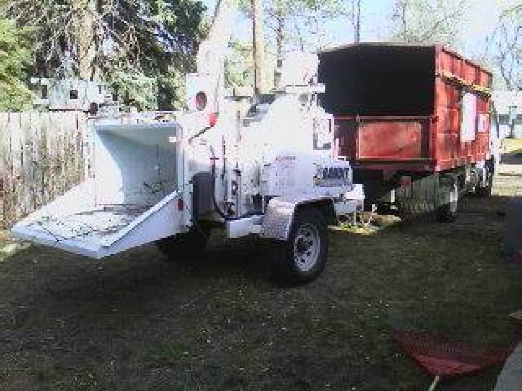 Stump Grinding in Fort Collins, CO